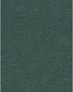 Spruce Green - 111212
