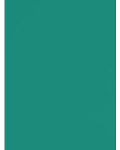 Pine - 111274