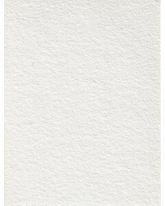 Polar White - 111228