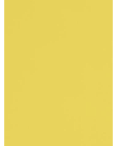 Sunshine - 111278
