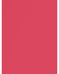 Watermelon - 111291